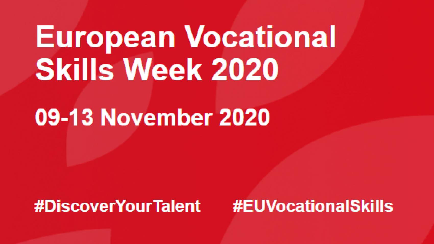 EU Vocational skills